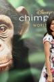 chimpanzee-premiere-018