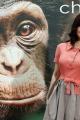 chimpanzee-premiere-021