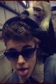 justinbieber-tattoo-monkeys-004