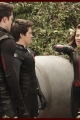 labrats-postedwhat-009