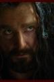 thehobbit-smaug-007