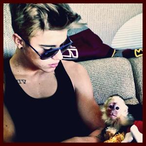 justinbieber-monkey-033013